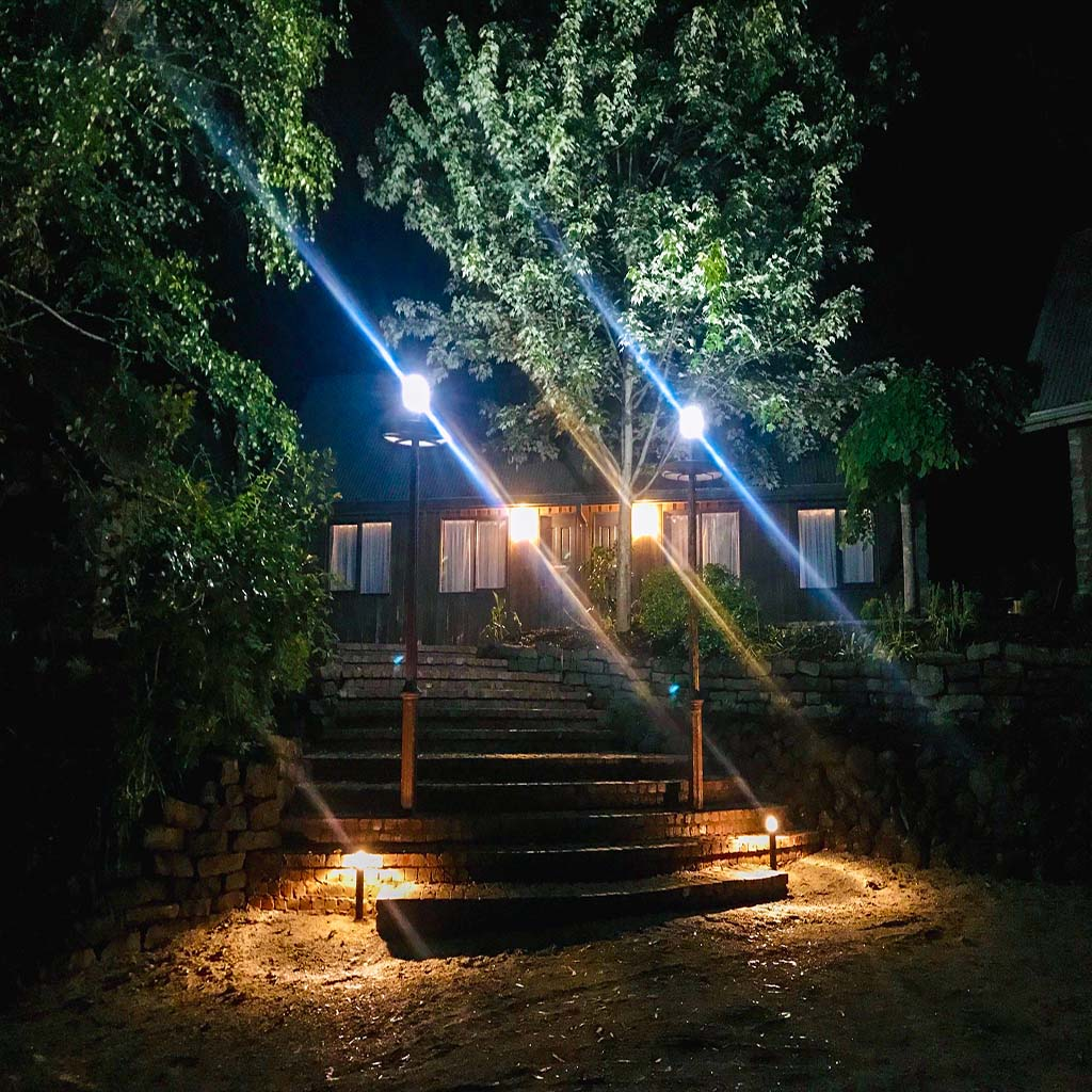 Acorn & Cherry steps night