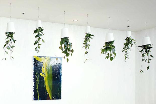 Boskke Sky planter room-2