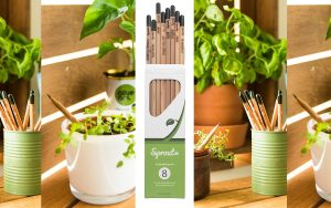 sprout-pencil-herb-pack-2